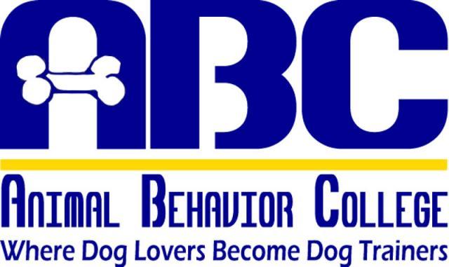 Service Dogs For America Abc Mentorship